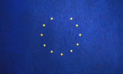 EU Member States Customs Requirements