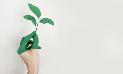CMA Publishes its Green Claims Code
