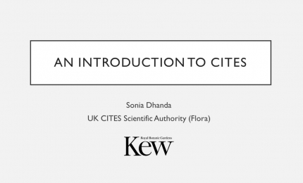 CITES, An Introduction