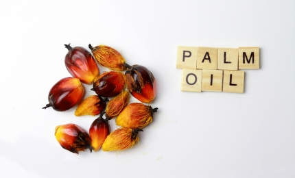Sustainable Palm Oil: a Resource for the Cosmetics Industry to Achieve Environmental and Social Goals